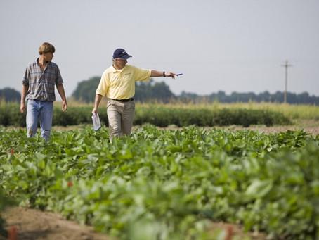 Agricultores de argentina llevan vendidos 27,9 mln tons de soja 2020/21: gobierno