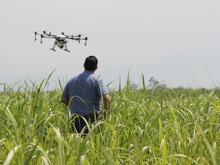 Drones en el agronegocio: un paso tecnológico hacia la productividad del campo