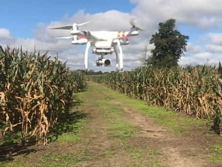 Tecnología e innovación reformulan los perfiles profesionales en el agro
