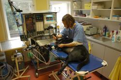 Přípravný operační sál