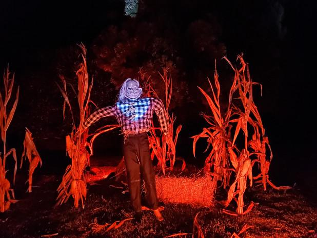 #Harold #ScaryStories