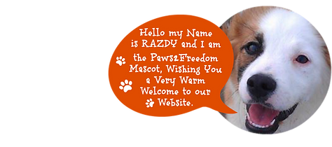 Razdy Paws2Freedom Dog Resu Mascot
