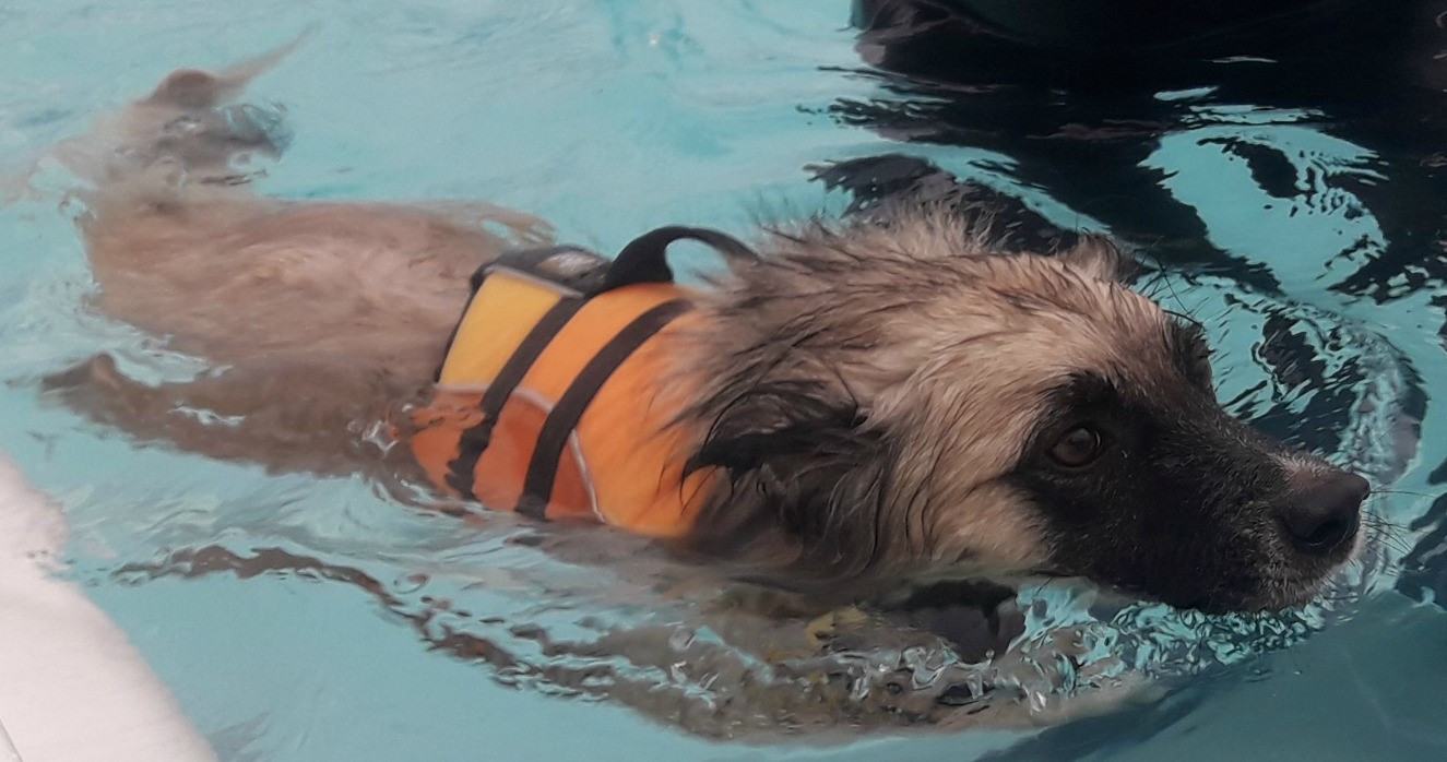 MAX at hydrotherapy