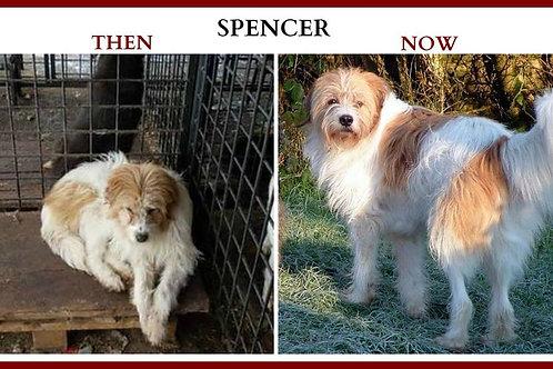 Please become SPENCER'S Sponsor