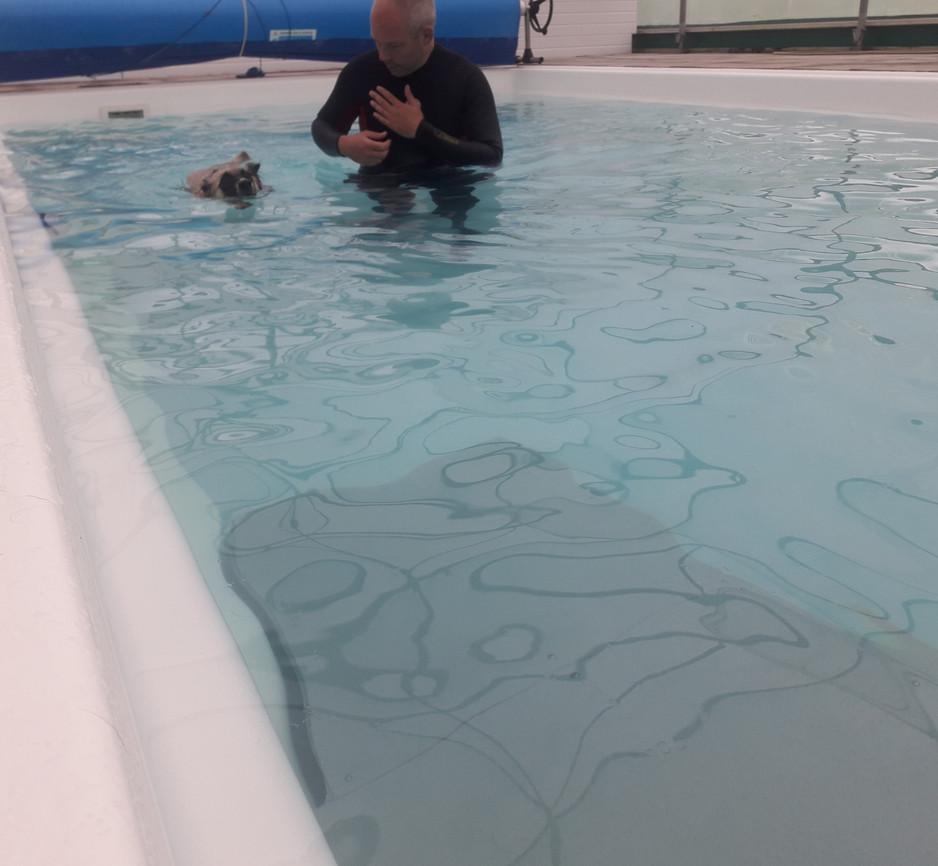 Swimming without Jon holding my harness. yaaaay!