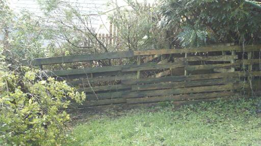 Broken Fencing behind broken pallets