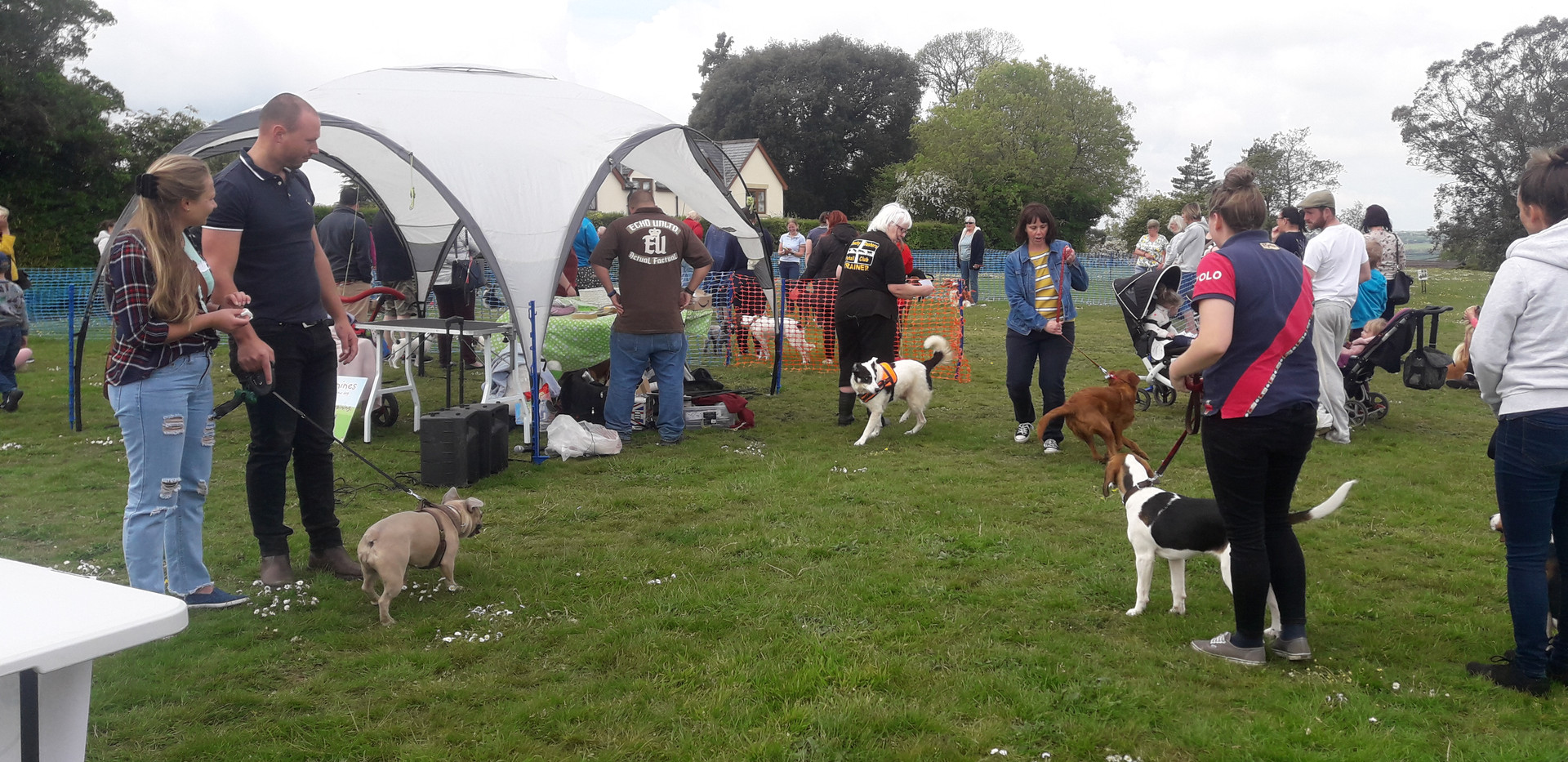 People turning up for the dog show