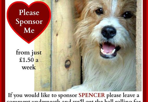 Please sponsor Spencer