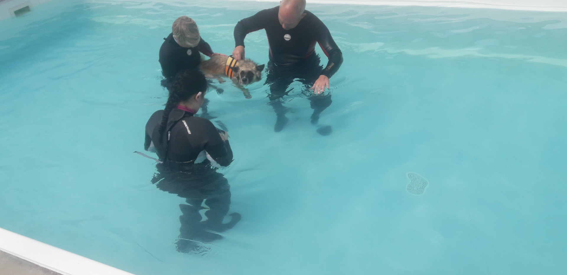 Held during his first swim to re-assure him and give Max a