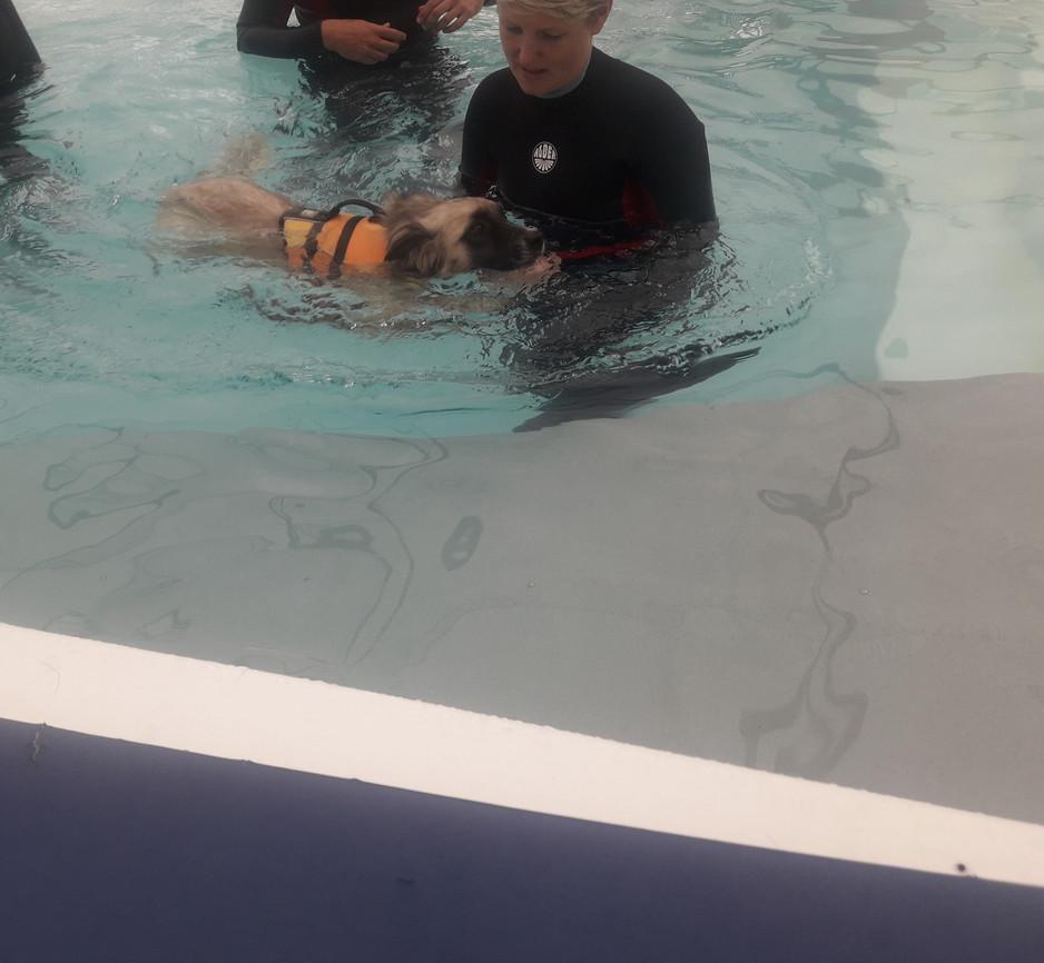 OK let's off my new skills! Here I swim.