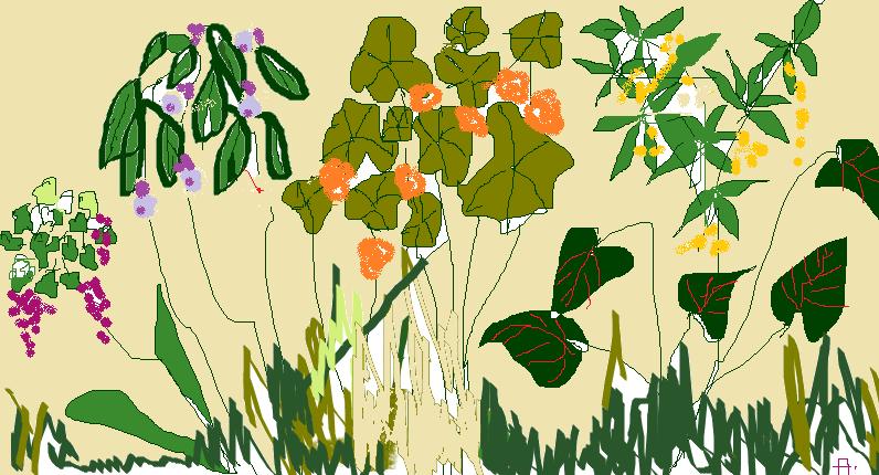 a garden corner.png