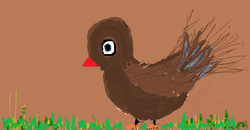 cute little chick.png