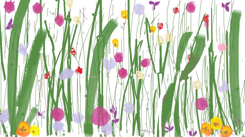 wild baby flowers