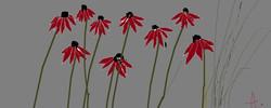 ac.flowers