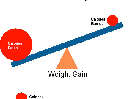 Why You're Not In A Calorie Deficit (Even Though You Think You Are)