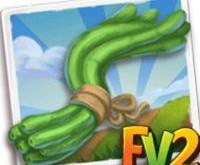 New Crop  Asparagus Bean            (Coming Soon)