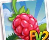 New Crop  Meeker June Raspberry  (Coming Soon)