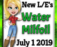 Add whimsy with the Water Milfoil! (Market LE Items)  July 1 2019