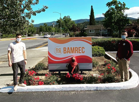 Why I Work at Bamrec