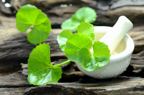 The skin benefits of Gotu Kola...find out why we call it Botox in a bottle!