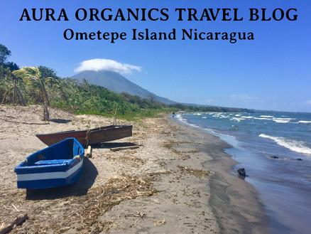 Organic Farming on Ometepe Island Nicaragua