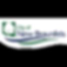 newbraunfels_logo.png
