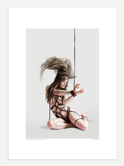 REPRODUCTION - Kinbaku
