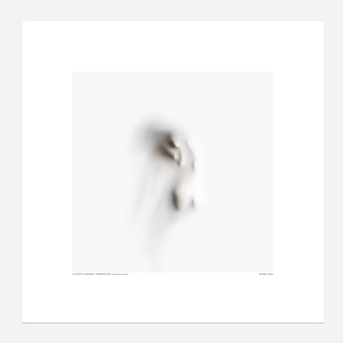 REPRODUCTION - Les Empreintés II
