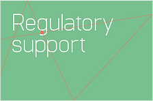 Regulatory Support Services button