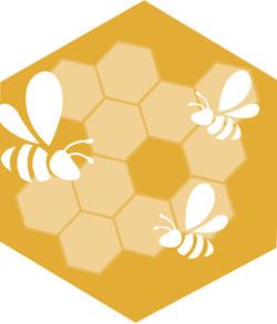 Pure, Raw Honey