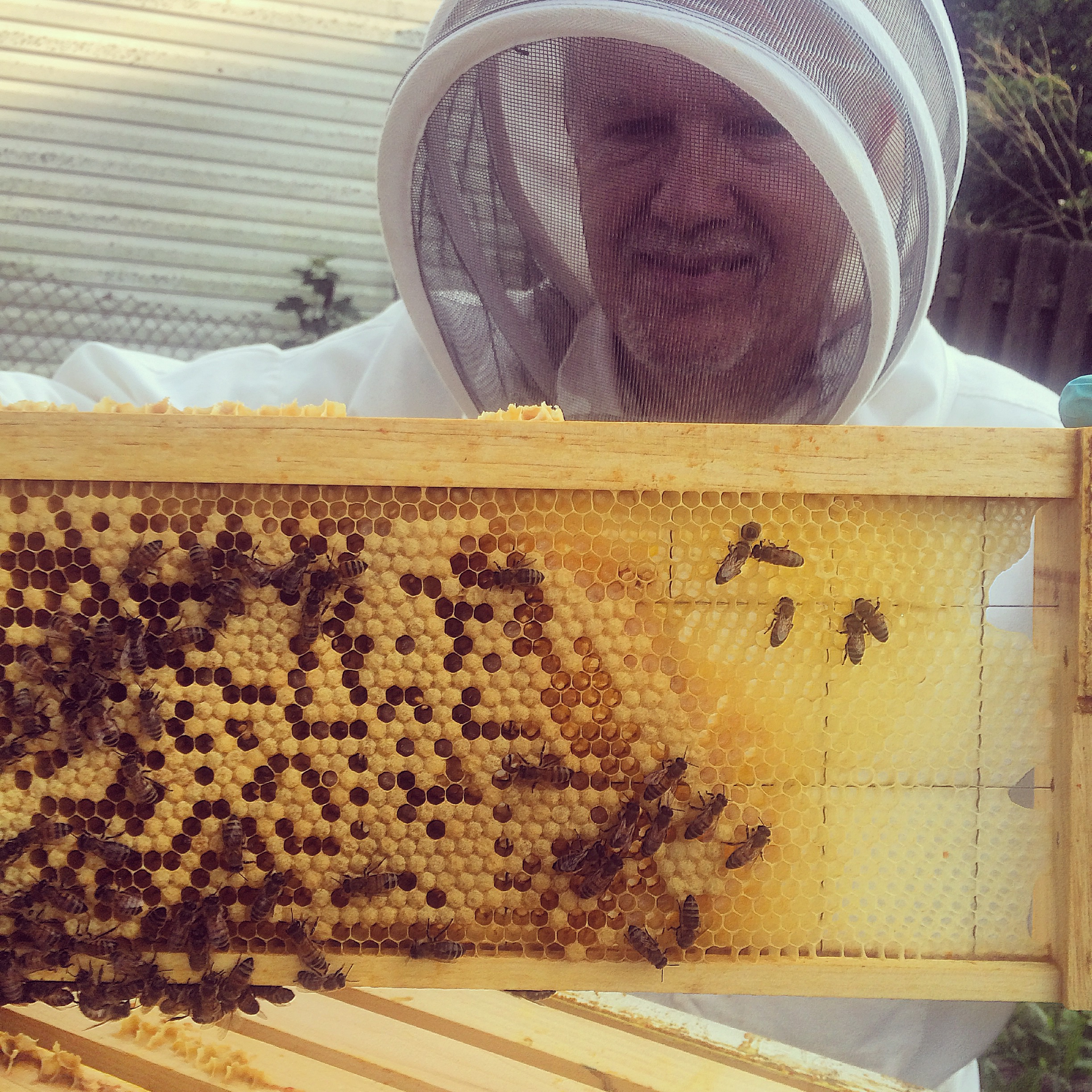 The Chief Bee Wrangler
