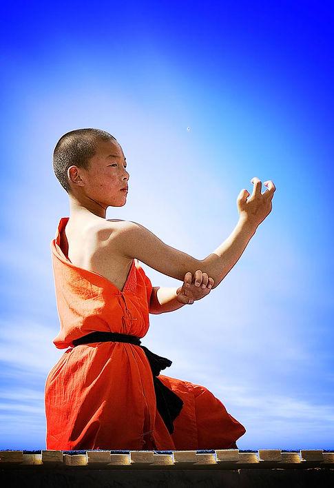 kung-fu-origines-800x1167.jpg
