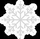 Snowflake_edited_edited.png