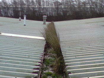 Commercial-Gutter-Cleaning-Before.jpg