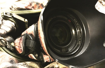 Film Your Hunt like a Pro - 3 tips to rival a TV quality production