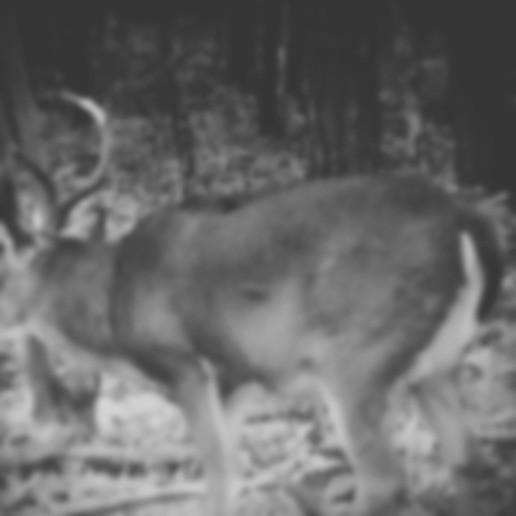 Biggest Hunting Edge of 2018