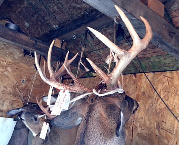 7 Keys to the Hunting Season Grind