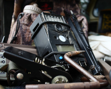 To Trail Cam or Not to Trail Cam?