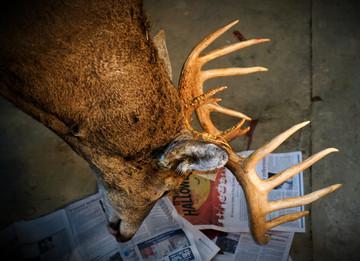 "The ""Hunt Harder"" Myth"