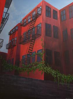 Brooklyn Vineyard Summer