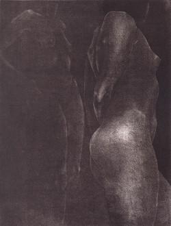 Nude in shadow