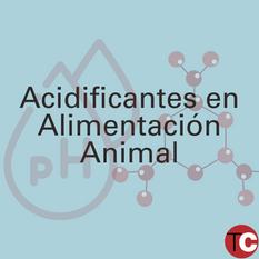 APLICACIÓN DE ÁCIDOS EN ALIMENTACIÓN ANIMAL