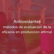 Antioxidantes: métodos de evaluación de la eficacia en producción animal