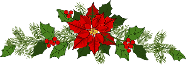 poinsettia for resources.png