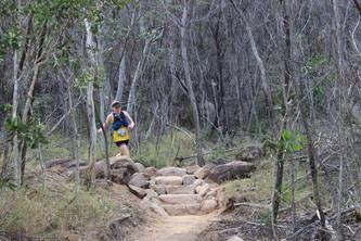 Race update: Maggie trail, Sunshine coast trail, Mt Mee half, Gladiator glasshouse
