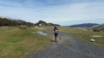 Race update: Luke vs Alpine challenge 160km trail run