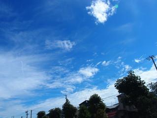 秋らしい青空のもとフレーミング工事が始まりました。