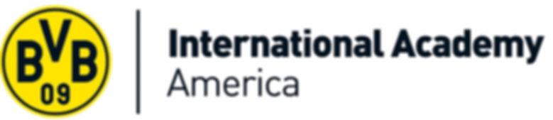 BVB_International_Academy_America_Logo.j