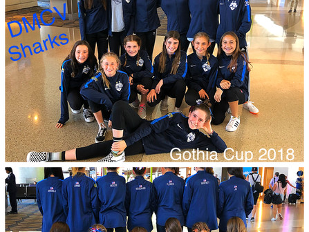 The DMCV Sharks played at the Gothia Cup in Sweden!