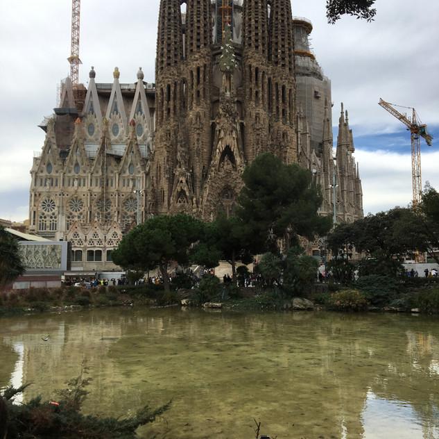 Barcelona Soccer Coaches Trip 2017 (9)